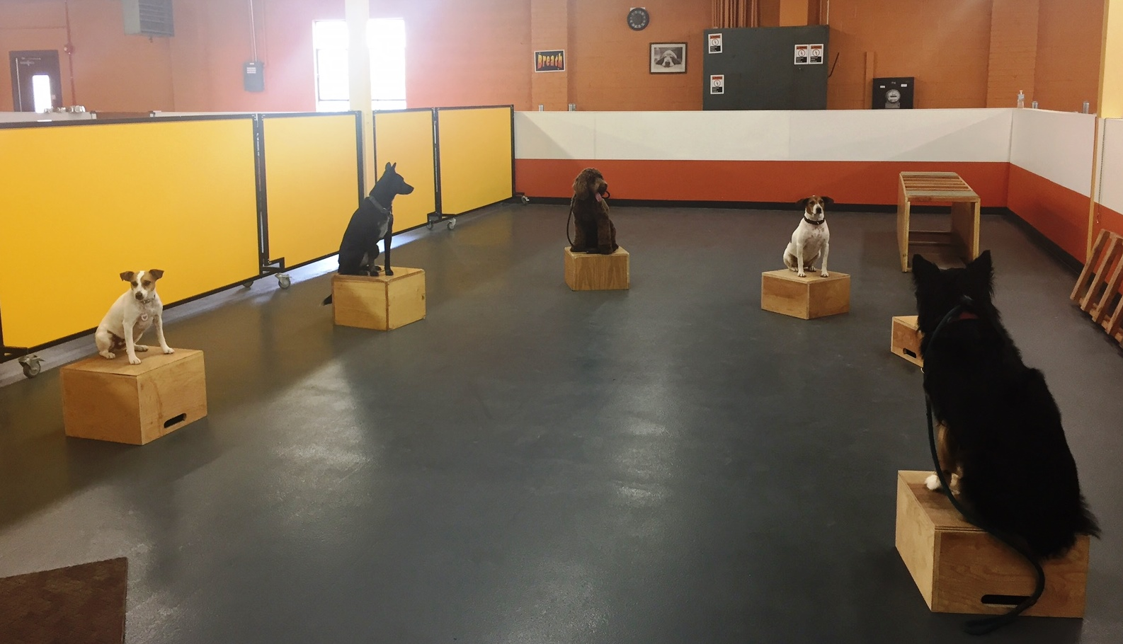 circle boxes